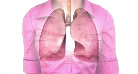 hoe werken longen